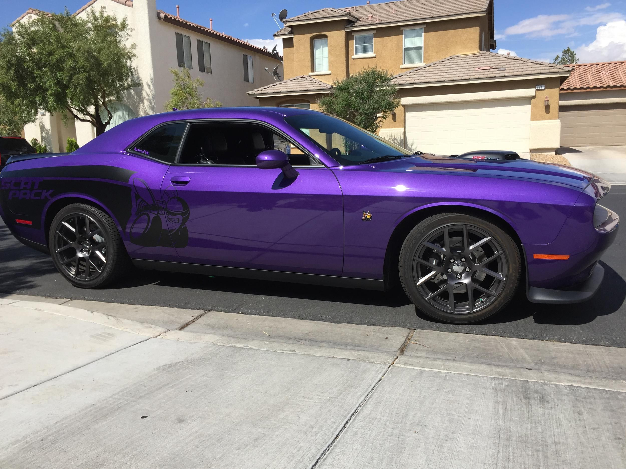2016 dodge challenger scat pack in plum crazy pearl with custom decal
