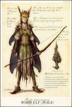 male fairy costume - Google Search