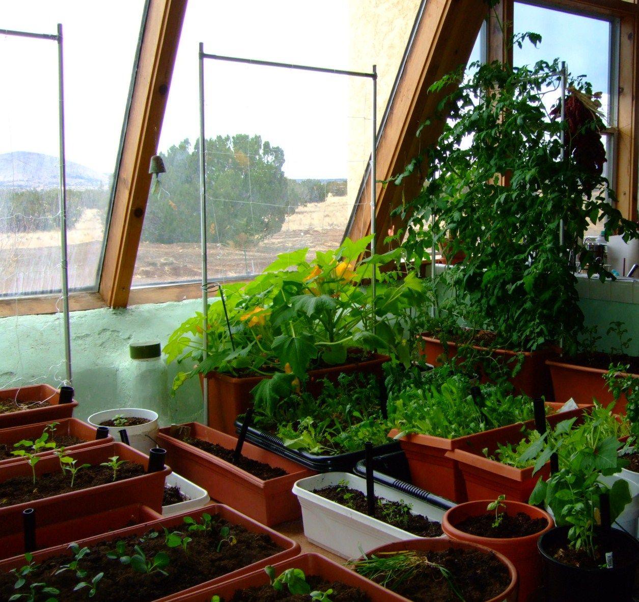Kitchen Garden Model: Indoor Garden, Indoor