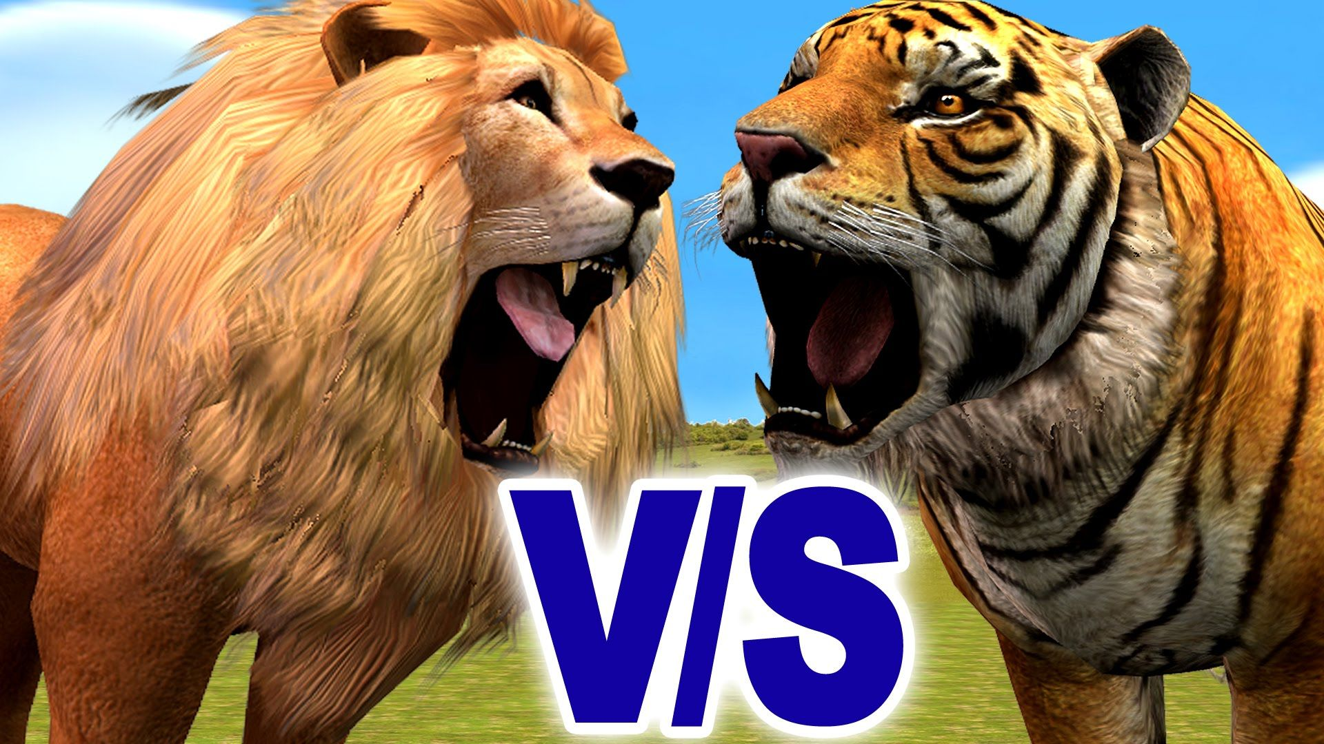Angry Lion And Wild Tiger Animal Fight | Lion Vs Tiger Finger Family |  Cartoon 3D Kids Nursery Song | Pet tiger, Family cartoon, Kids nursery songs