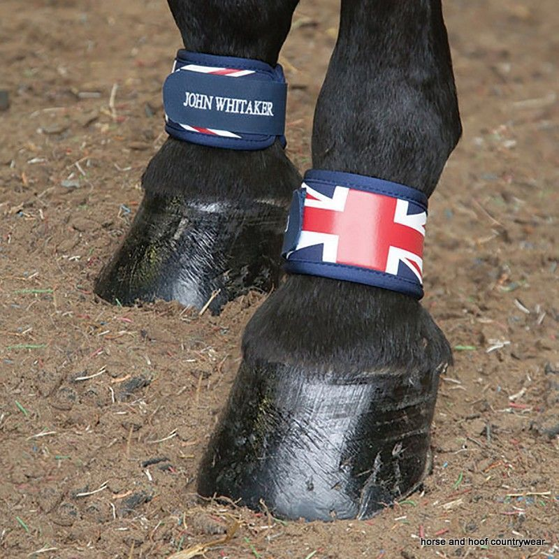 John Whitaker Neoprene Leg Bands The Union Jack Leg Bands prevent are designed to protect the horse s pasterns from any bumps and knocks to the lower