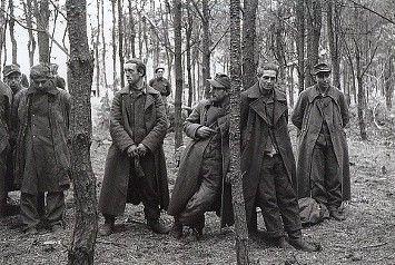 Duitse gevangenen bij Overloon