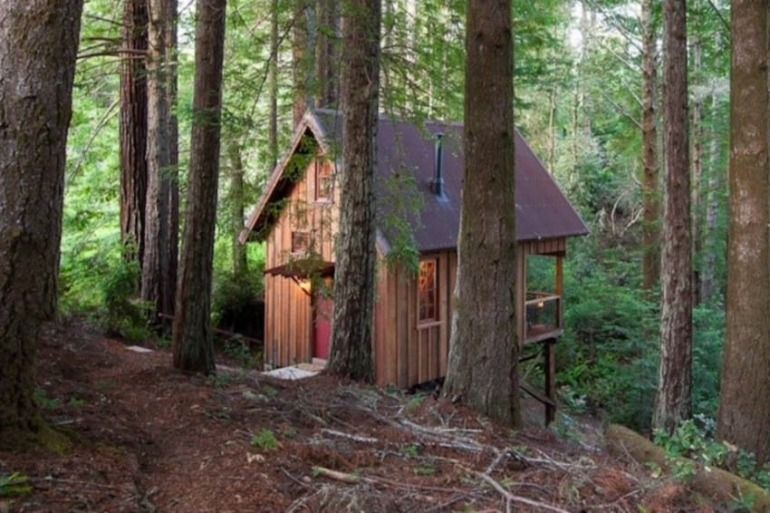 Visiting the redwoods and wine country in California, but looking for somewhere to stay which is a little off the beaten path? Owl Tree Cabin is cloistered in the sheltering beauty of the redwoods near Mendocino, CA.