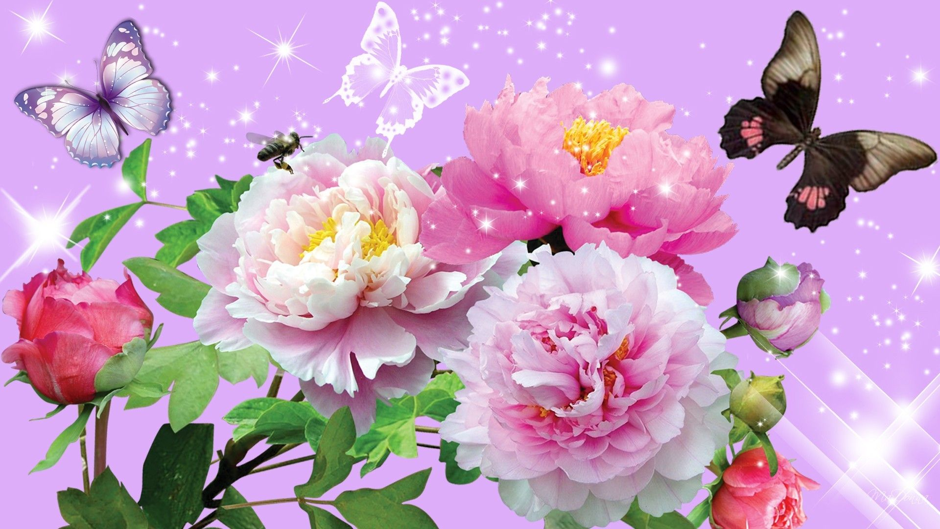 Beautiful flowers and butterflies vector background Free vector in ...