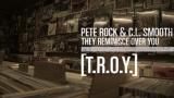 """""""T.R.O.Y."""" - Pete Rock & C.L. Smooth // Magnum Opus"""