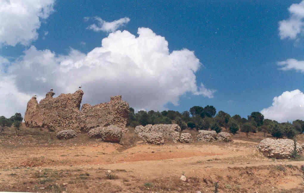 BELVER DE LOS MONTES 2.jpg (1020×649)