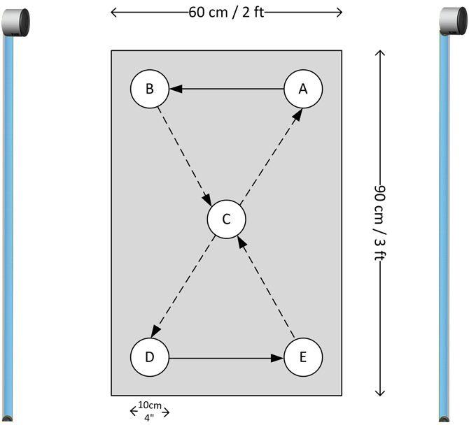 Microgate Optogait Five Dot Drill Protocol Drill Dots Injury Prevention