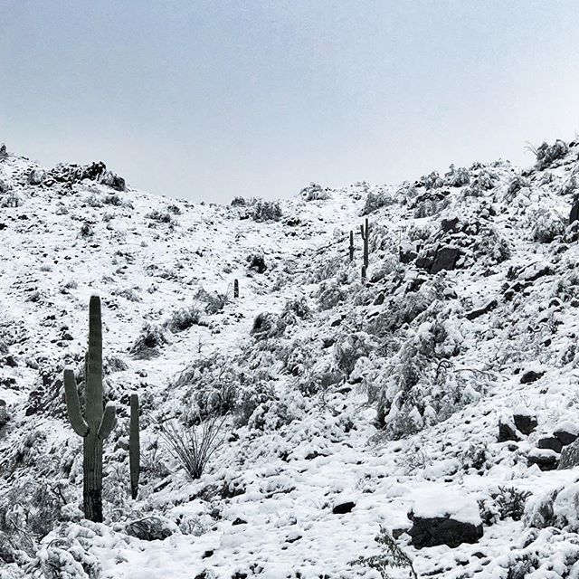 Mountain snow in Fountain Hills, Arizona... Will be gone
