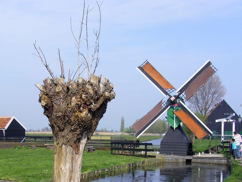 De Zaanse Schans - Weidemolen 'De Hadel'.jpg
