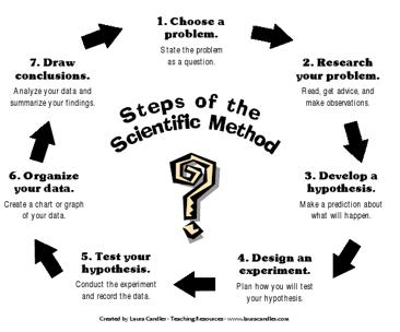 Steps Of The Scientific Method Scientific Method Science Teaching Resources Scientific Method Posters