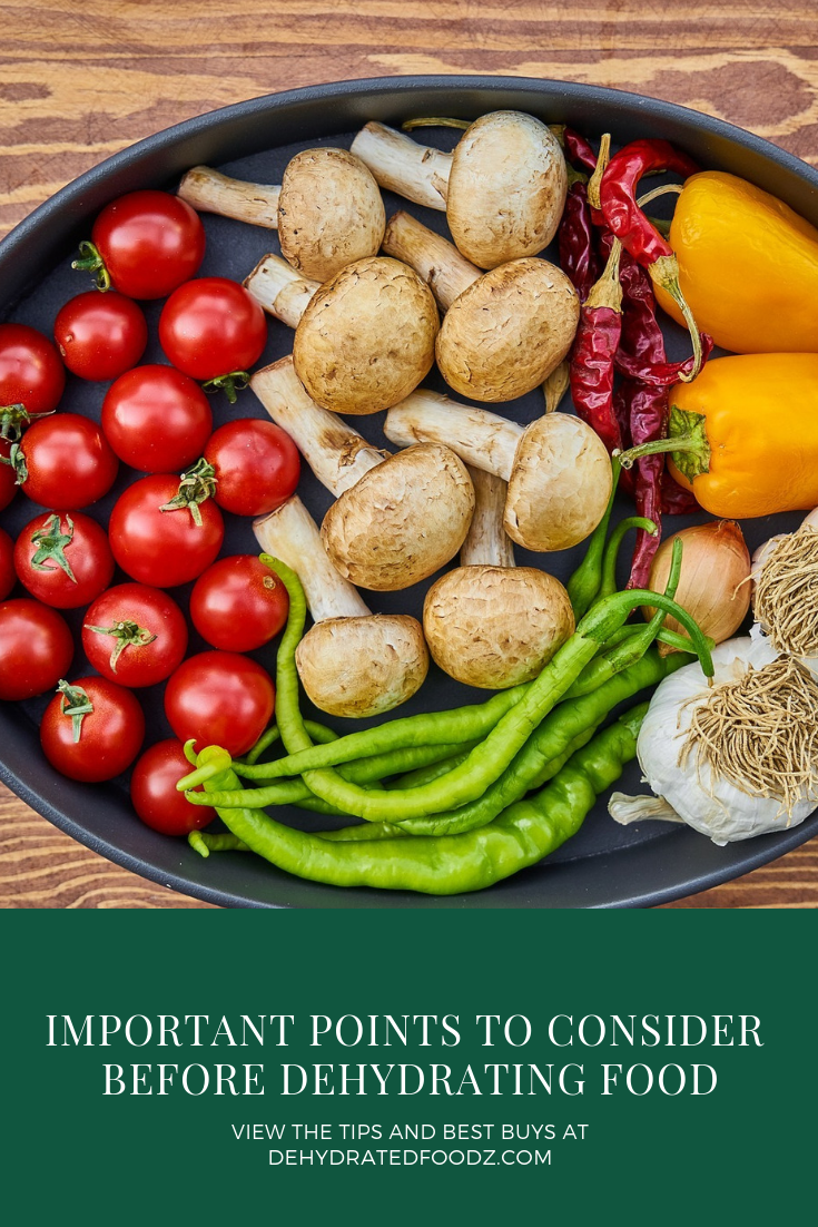 Important Points To Consider Before Dehydrating Food