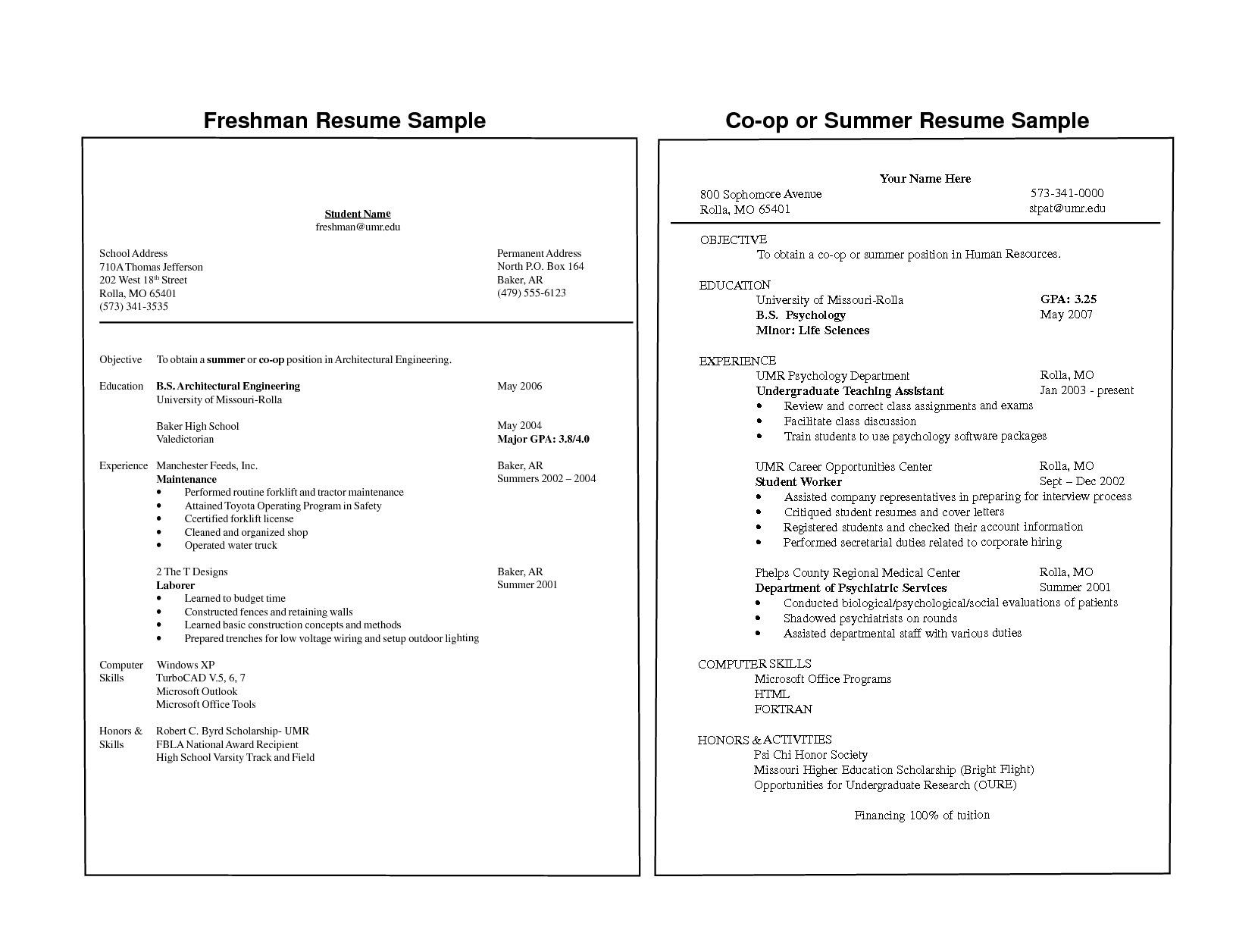 Freshman College Student Resume Examples Templates College Student