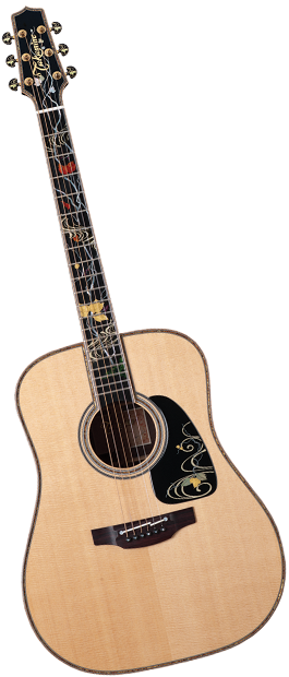 A Piece Of Art Takamine Acoustic Guitar With Various Colors On The