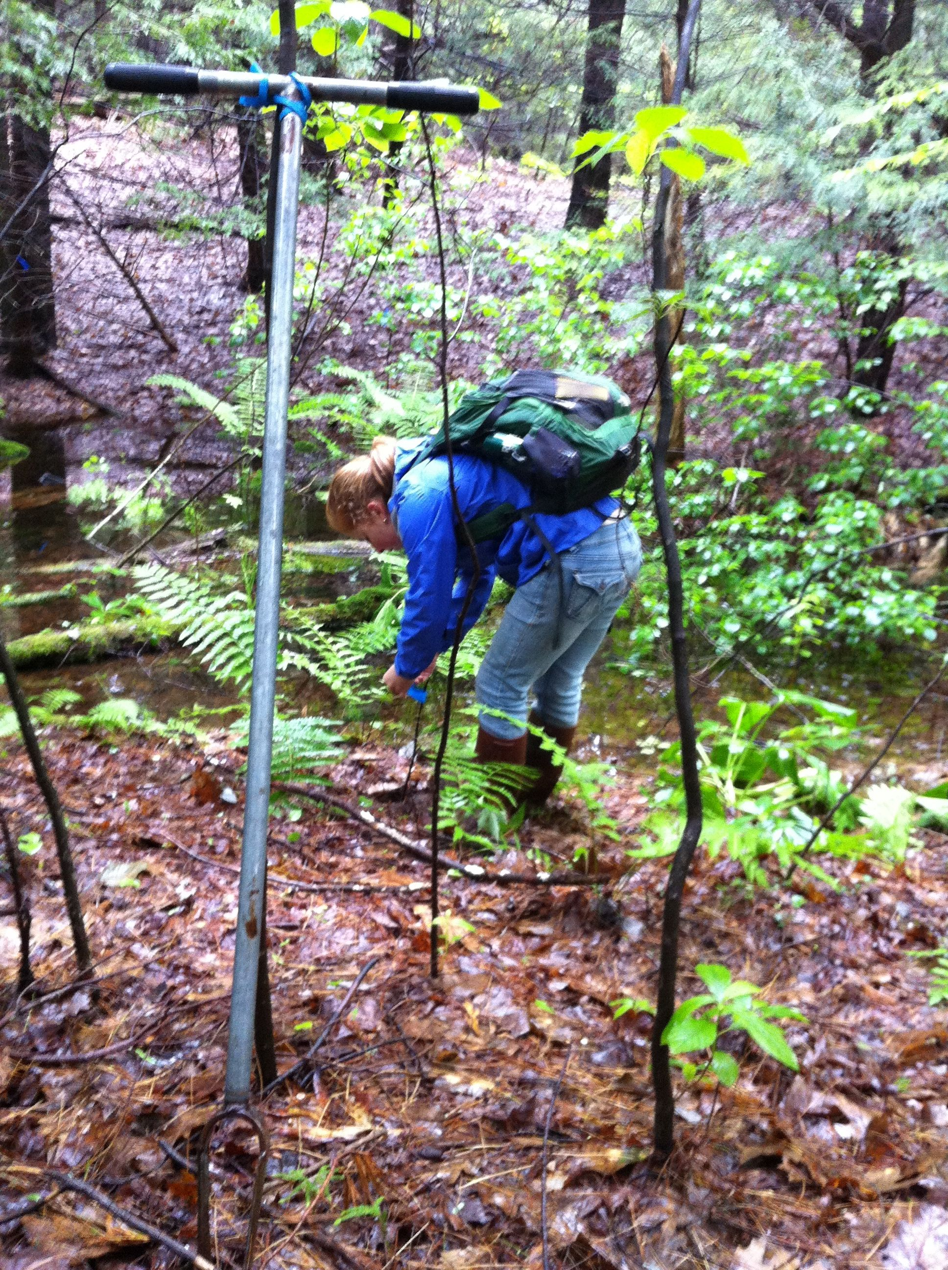 5 Day Inland Wetland Delineation Methods Course: Finding the Boundary of a Vernal Pool