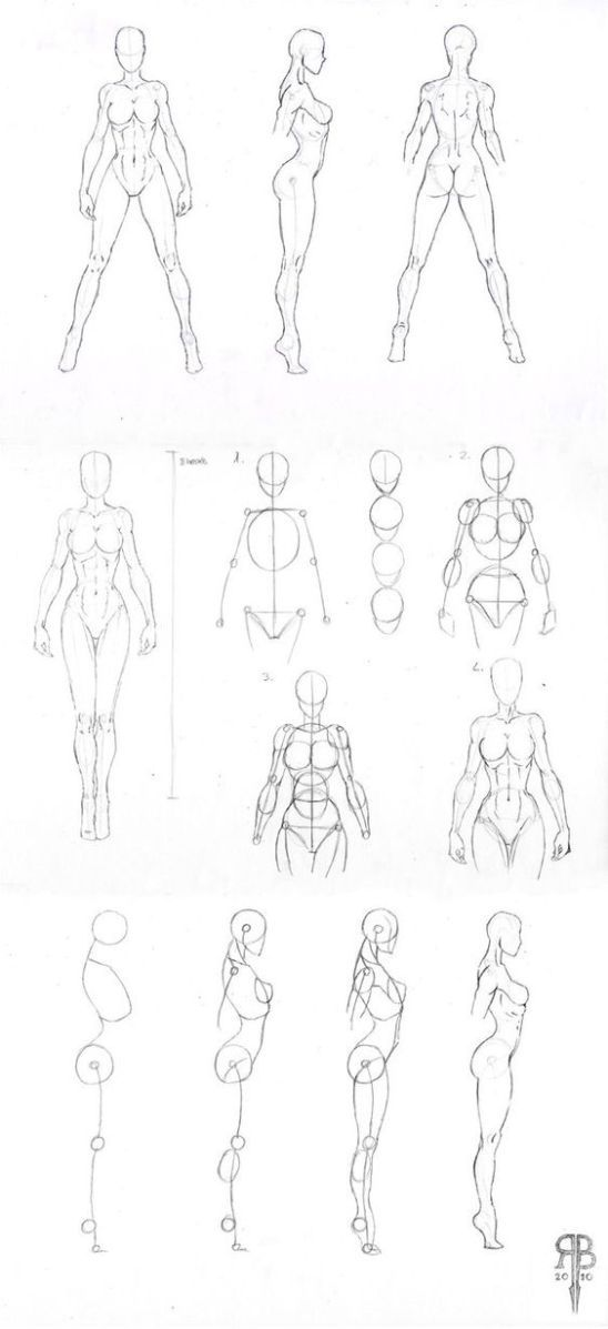 Character Design Collection: Female Anatomy   sketch   Pinterest ...