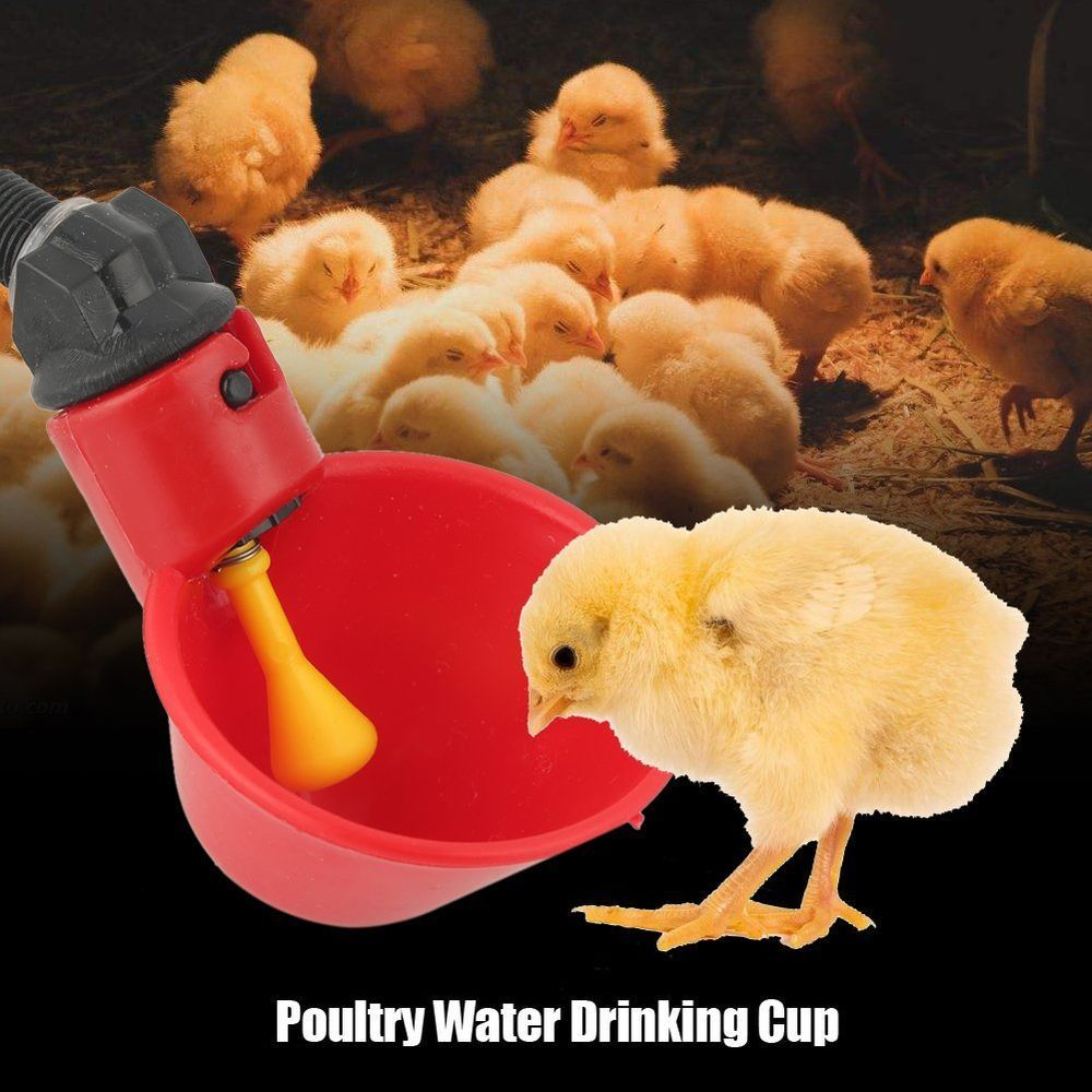 10pcs Feed Automatic Poultry Water Drinking Cups Bird Coop Chicken Fowl Drinker Chickenhouse Chickencoopplan Drinking Cup Poultry