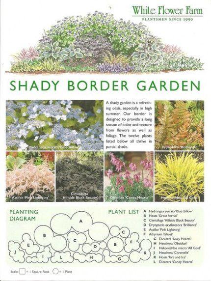35+ Trendy Backyard Shade Garden Spring garden backyard is part of Shade garden plants -