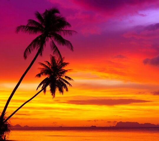 Pin By Nilesh Jain On Sun Sand Sea Sunset Landscape Sunset Wallpaper Landscape Scenery Beautiful wallpaper island sunset