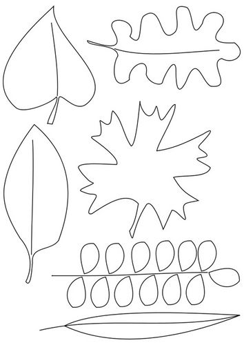 kleurplaat bladeren kleurplaten herfstblad kleur