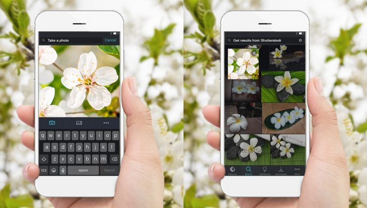 How To Reverse Image Search On Iphone With Shutterstock