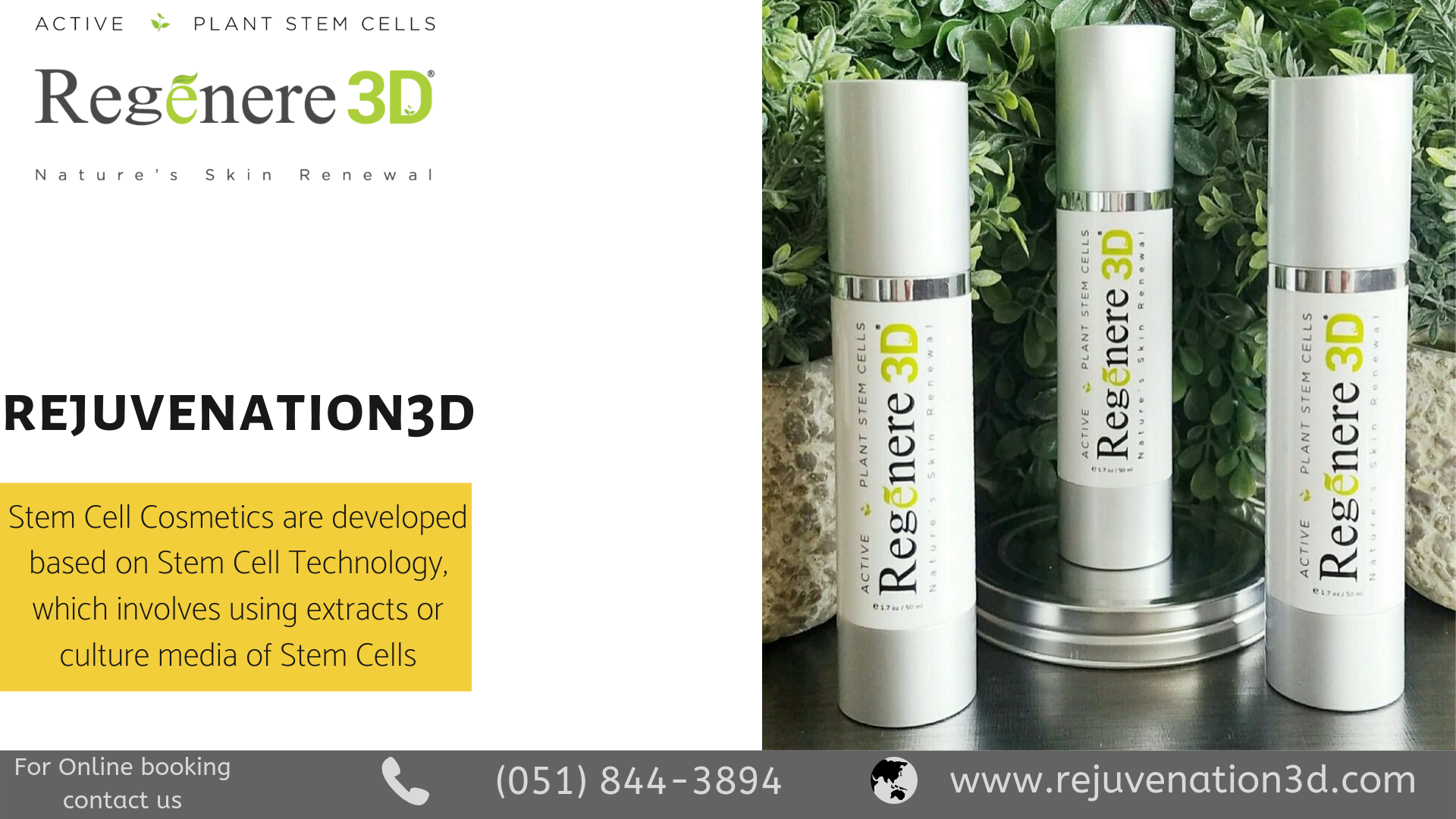 Active Plant Stem Cells To Head Your Skin Plant Stem Cell Stem Cells Skin Care