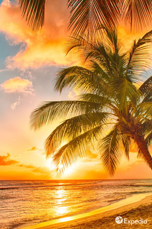 Check out the best Hawaii beaches - Expedia Viewfinder Travel Blog.
