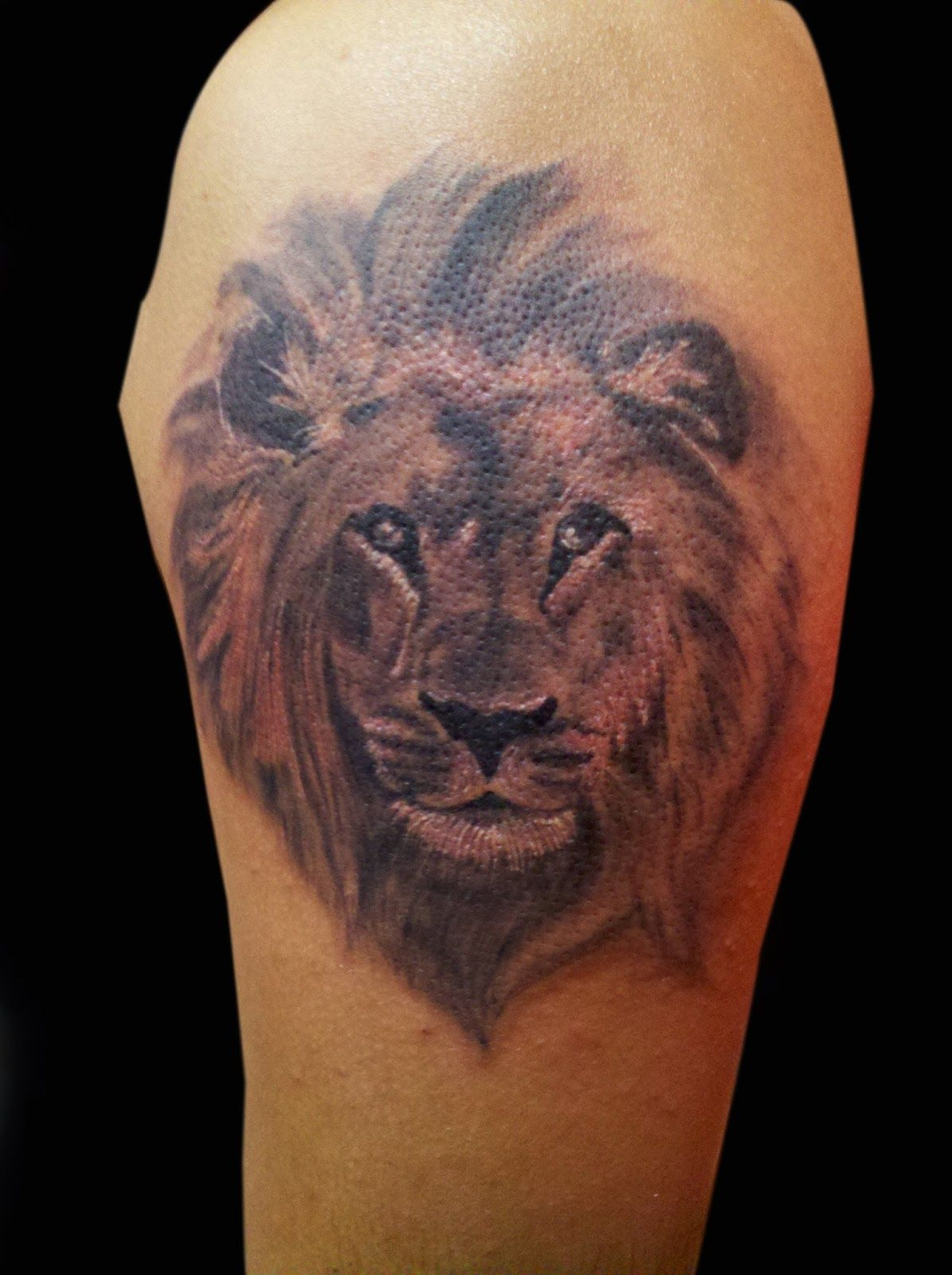 Best Tattoos Ever Done Lion Tattoo Tattoos Best Tattoo Ever