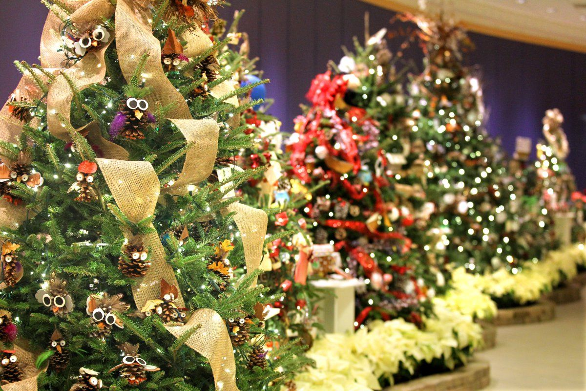 Christmas Lights Tree Lighting Ceremonies Markets And More Cleveland Our  Northeast Ohio Holiday Activities Is Jam Packed With Christmas Light