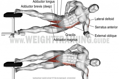 Side plank hip adduction exercise instructions and video #weighttraining