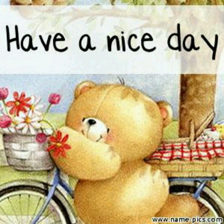 Nice Day For A Little Ride Forever Friends Bear Teddy Pictures Teddy Bear Pictures