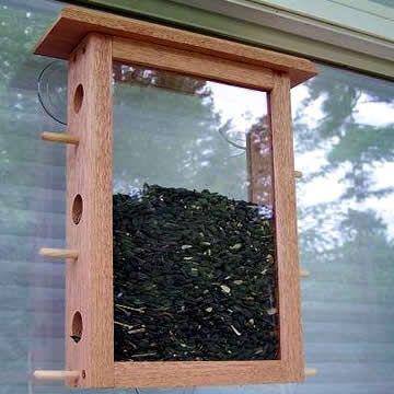Perfect For The Big Glass I Got Window Bird Feeder Window
