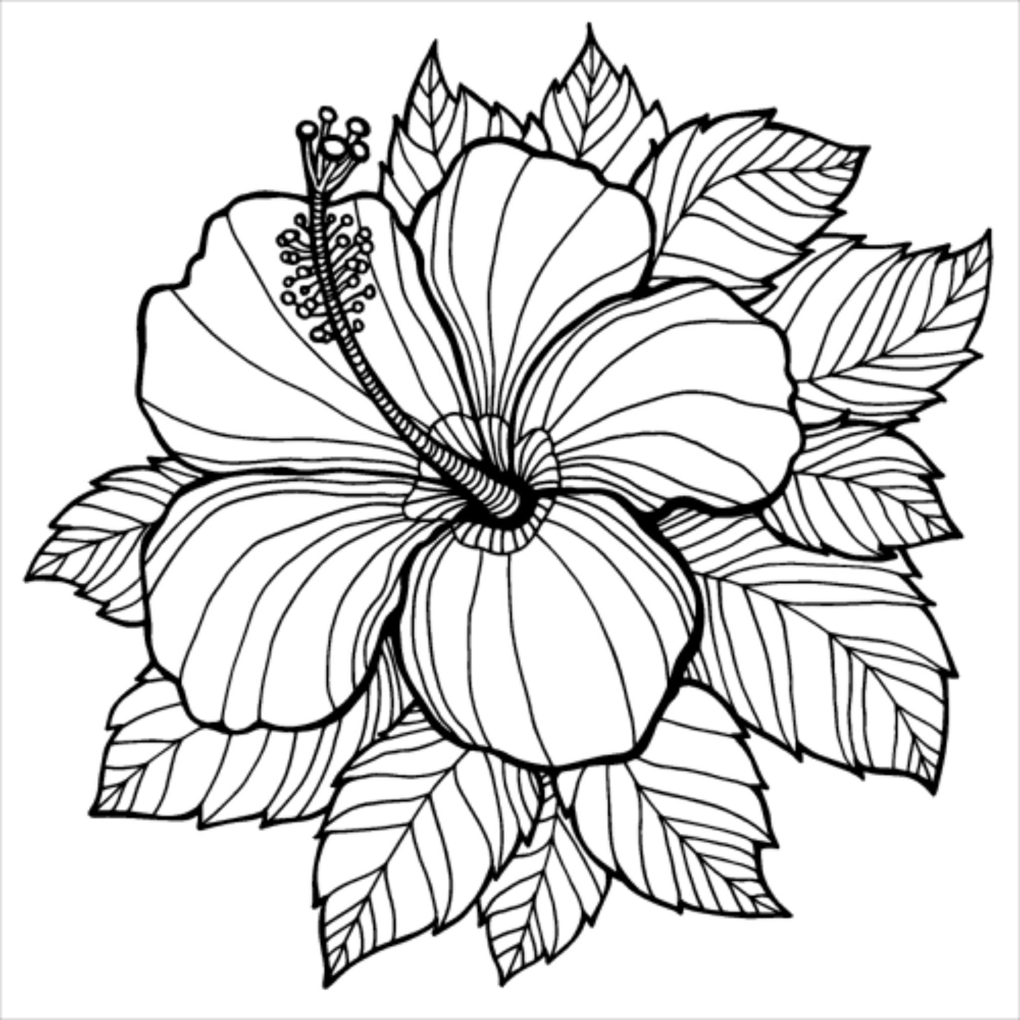 Expectations Resentments Flower Coloring Pages Mandala