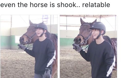 I'm more shook than that horse    I wanna see him ride