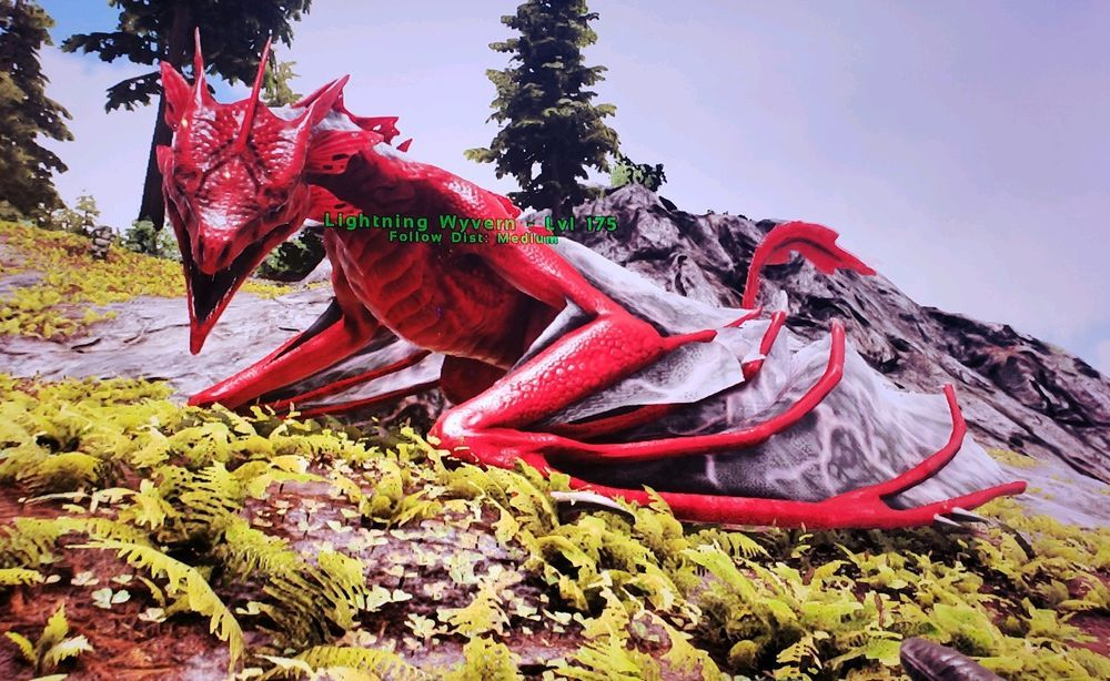Ark Survival Evolved Christmas Event.Ark Survival Evolved Xbox One Official Pve 175 Fire Wyvern