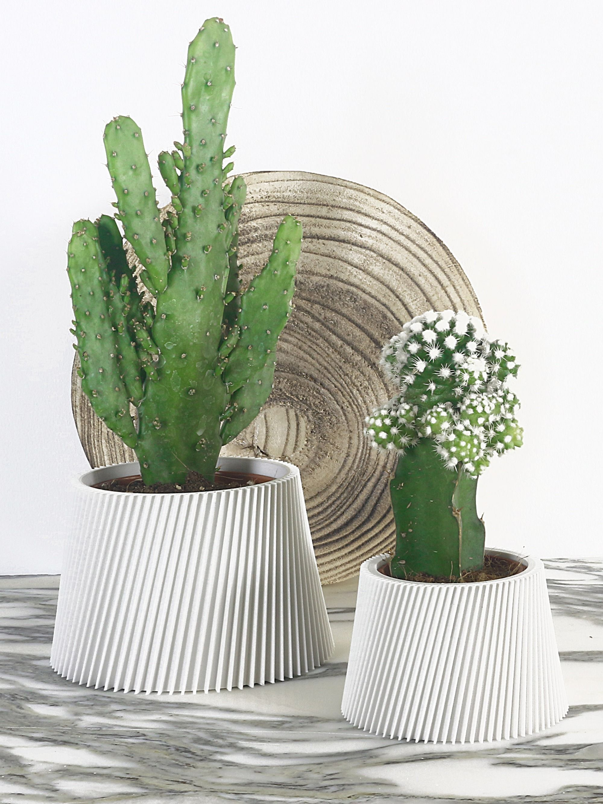 Elegant 3d Printed Pot Planter Bioplastic Matte White Cactus