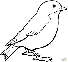 Image Result For Gorrion Dibujo Pajaros Para Colorear Bordados De Aves Dibujos De Pajaro