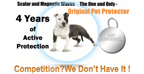 Pet protector # 1 – the world of pets