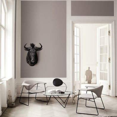 Cool Grey Wall Color Design, Pictures, Remodel, Decor and Ideas