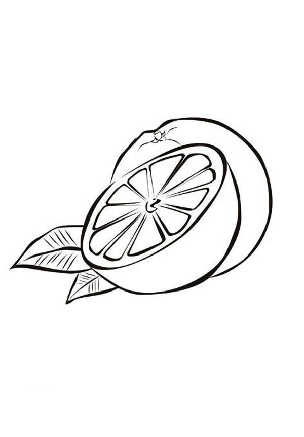 Slice Of Fresh Orange Fruits Coloring Page Kids Play Color