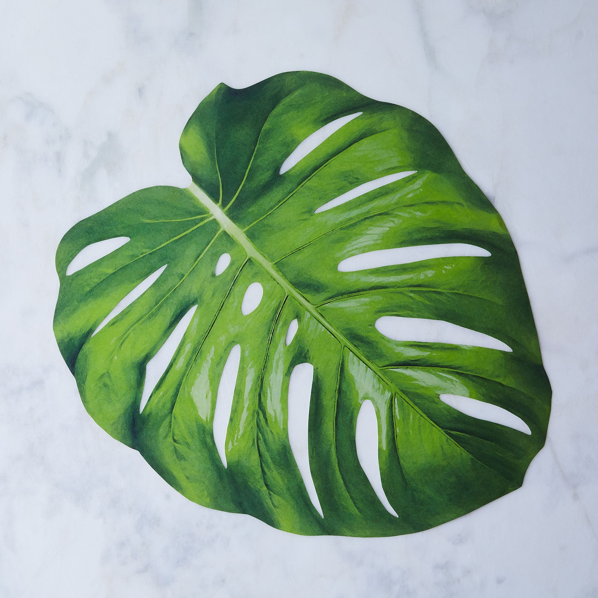 Recycled Paper Leafy Placemat Set Of 12 Monstera Leaf Monstera Placemats