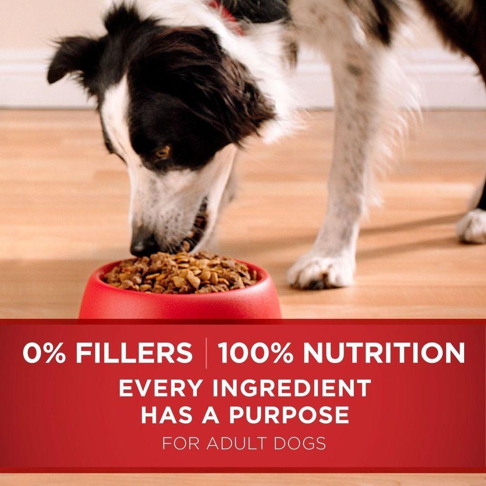SmartBlend Natural Chicken & Rice Formula Adult Dry Dog