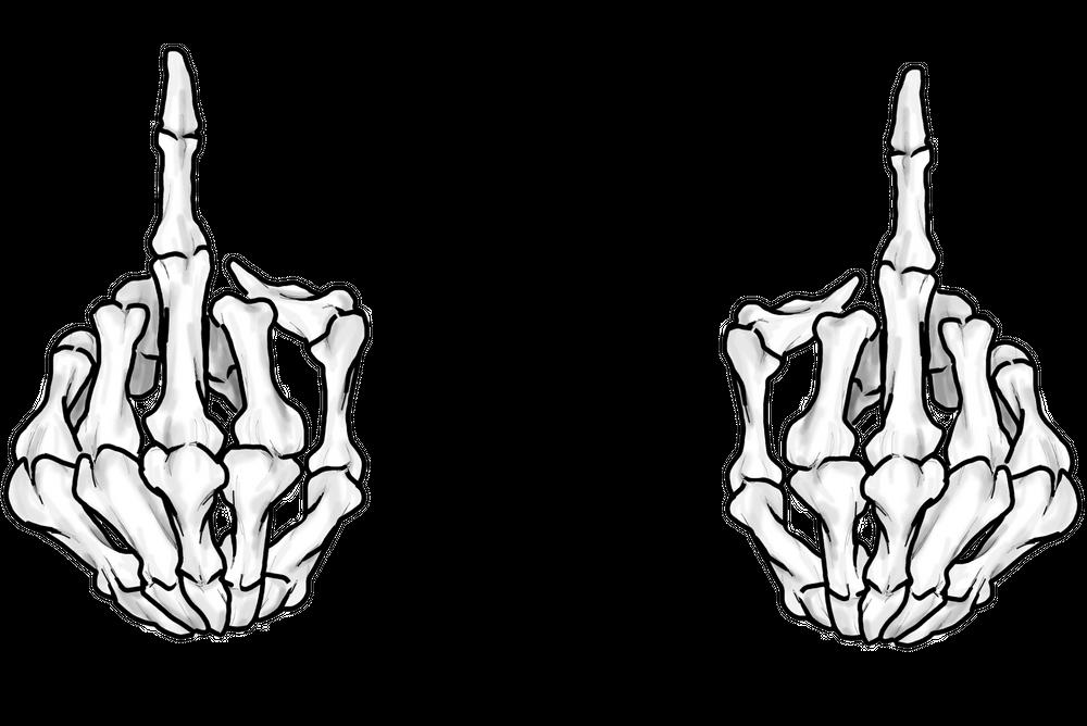 Transparent Skeleton Hand Middle Finger - The skeleton of ...