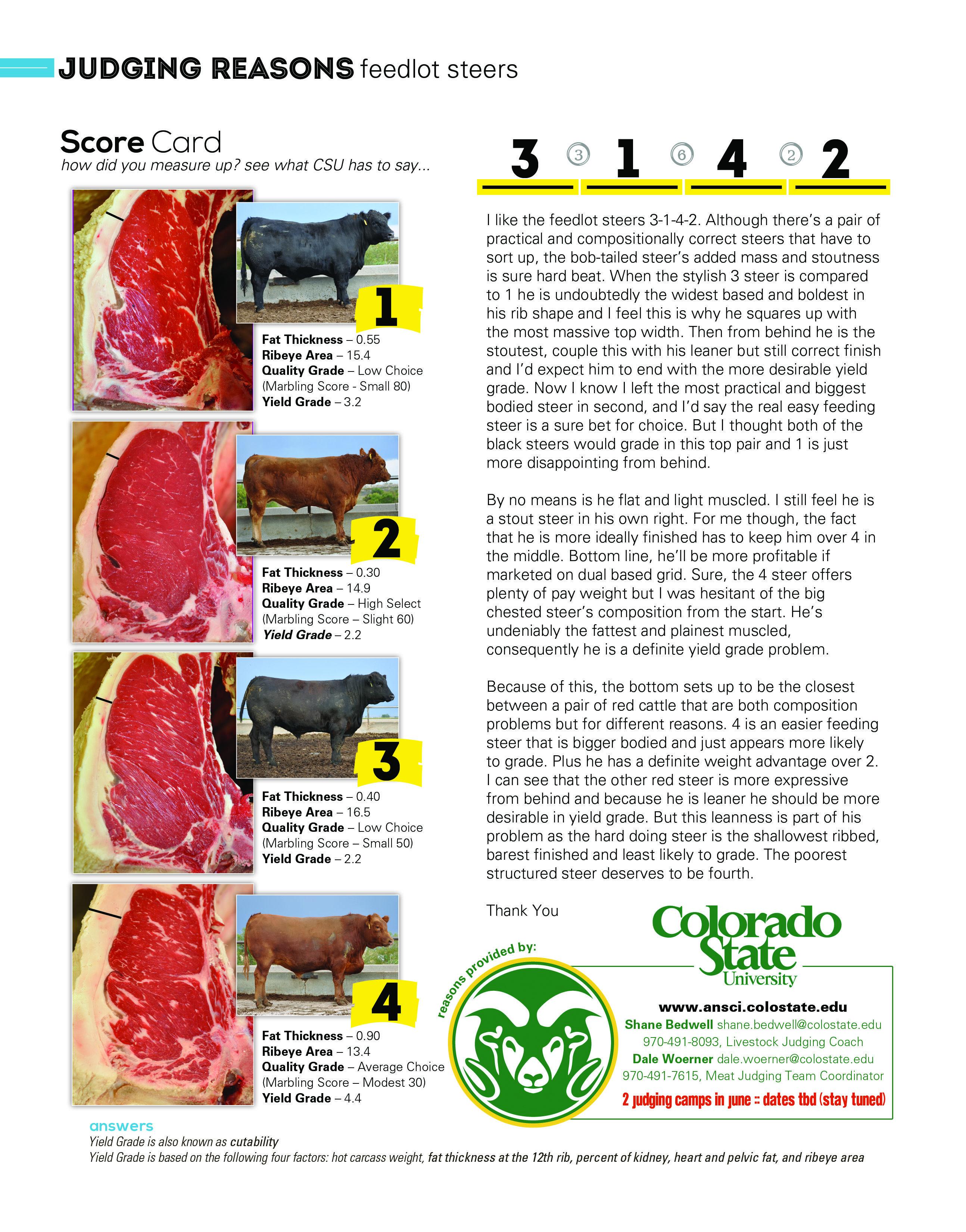 DRIVE Livestock Homepage   Livestock judging [ 3300 x 2588 Pixel ]