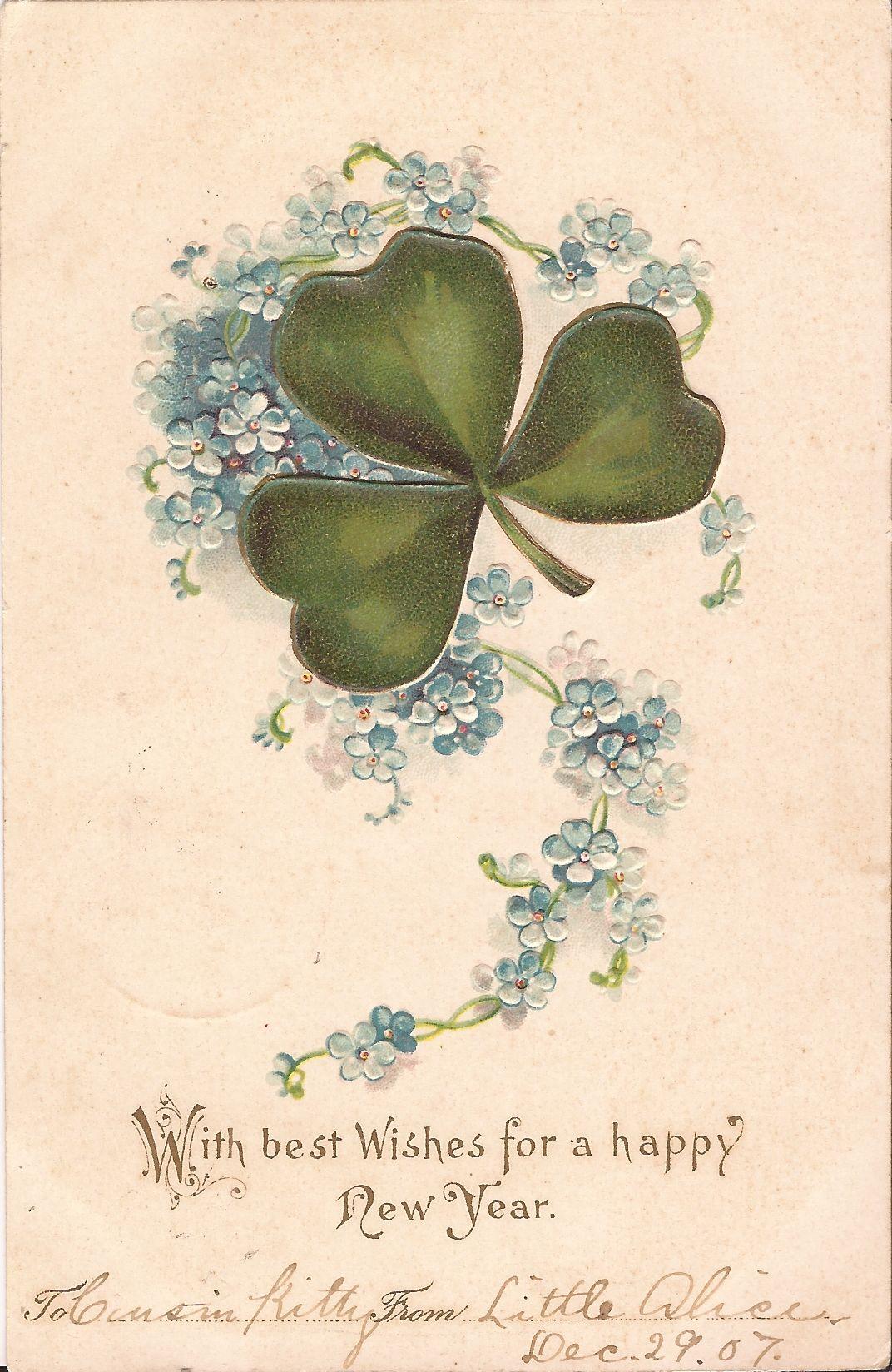 Happy New Year 1907 Clover Forget Me Nots Embossed Shamrock Vintage Postcard Newyear Postcard