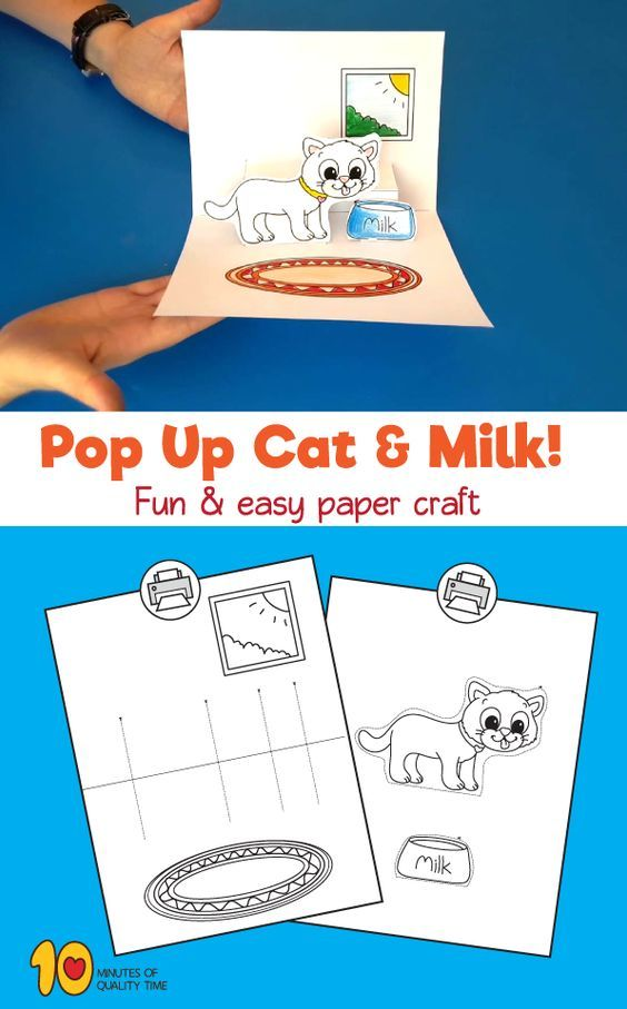 Pop Up – Cat and Milk