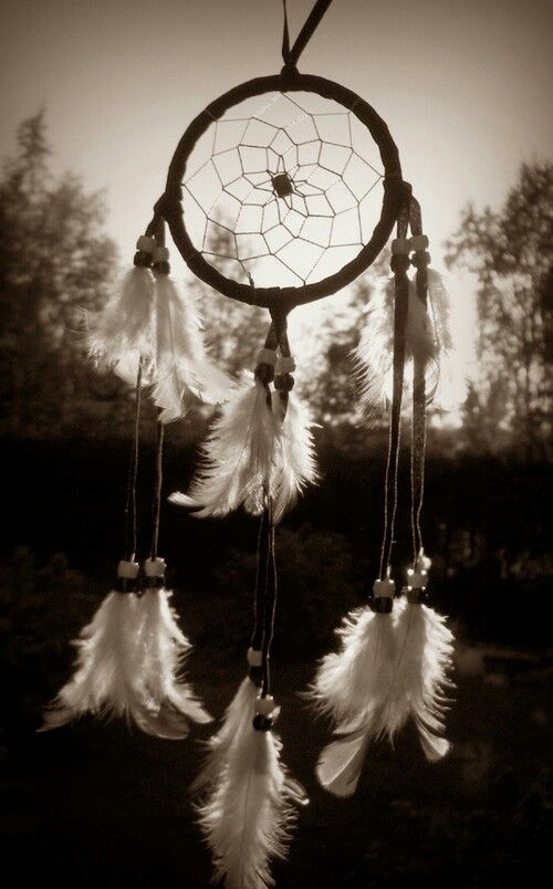 Hipster wallpapersfeather grey dreamcatcher