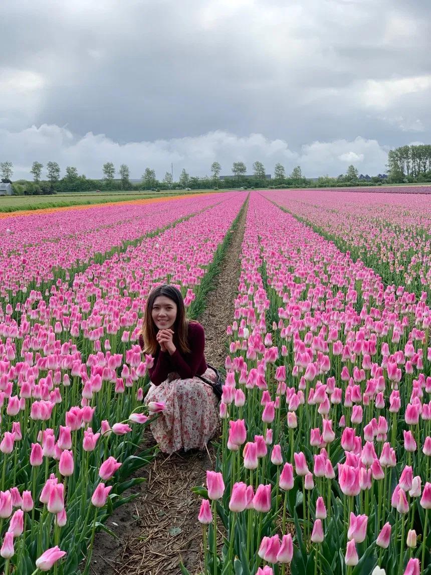 Lisse Tulips Heaven At Fam Flower Farm Salseralove Flower Farm Tulips Farm Visit