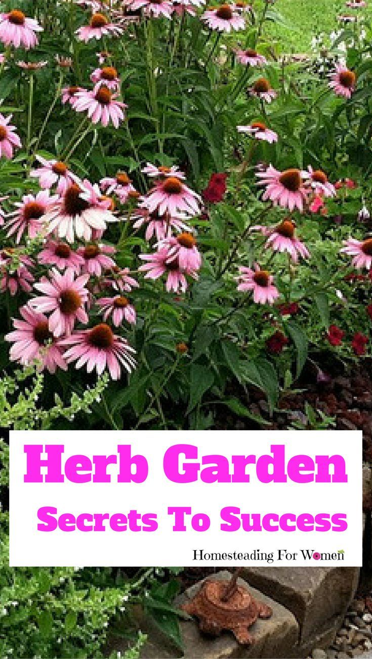 Best secrets of successful herb gardening my new ebook gardens