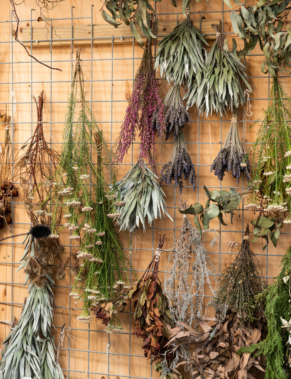 You'll be obsessed with dried flowers after seeing Mark Antonia's work #driedflowers