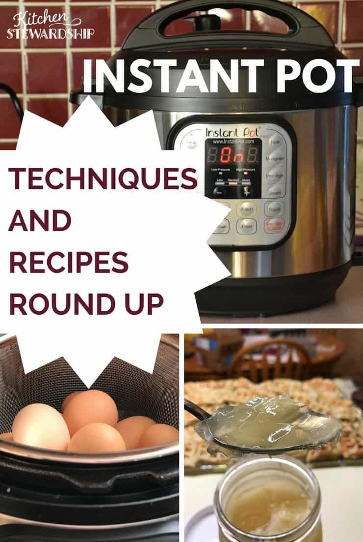 Instant pot tips, techniques and recipe round up